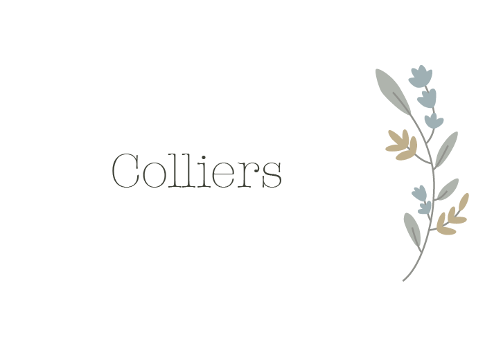 COLLIERS SAUTOIRS
